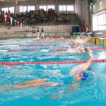 stage natation à Torremolinos, bassin 50m couvert