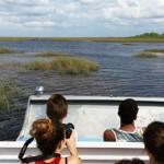 Stage natation Plantation en Floride, excursion aux Everglades